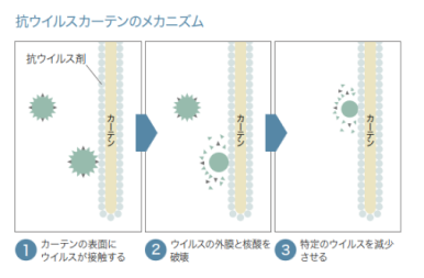 抗ウィルスカーテンのメカニズム.pngのサムネイル画像