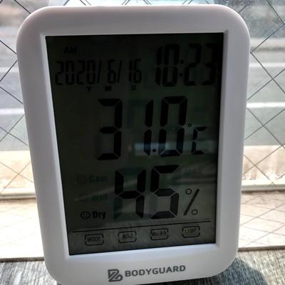 2020.6.16 2F窓辺室温.jpg